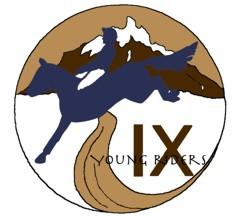 Area IX YR Logo Color