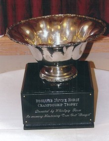 Champion Beg. Novice Horse Trophy