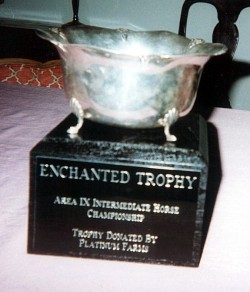 Champion Intermediate Horse Trophy