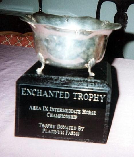 Champion Intermediate Horse Trophy