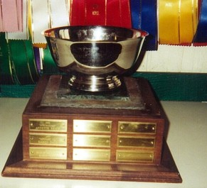 Champion Novice Horse Trophy